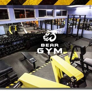 Bear Gym and Supplements Pattaya   Beauty