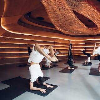 Vikasa Yoga On 24   Beauty