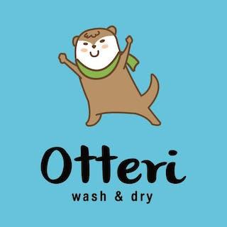 Otteri WASH & DRY | Beauty