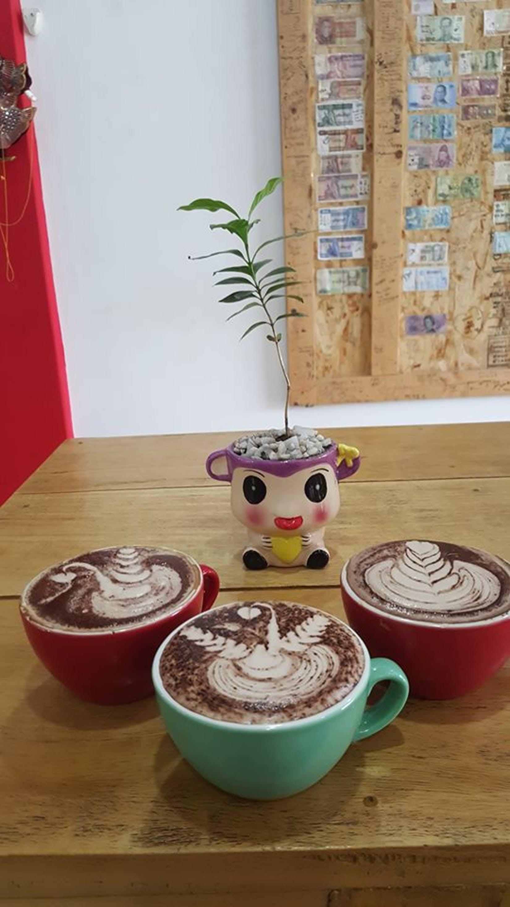 Sensation Coffee Roasters | yathar