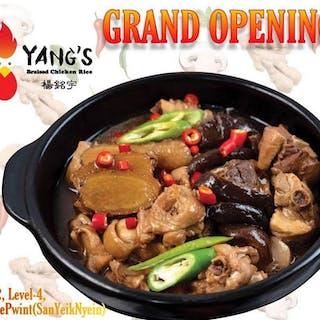 Yang's Braised Chicken Rice - Yangon   yathar