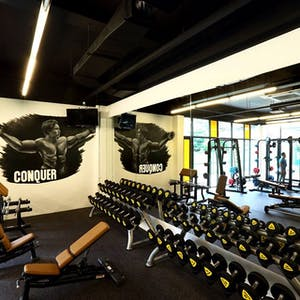 Active Gym | Beauty