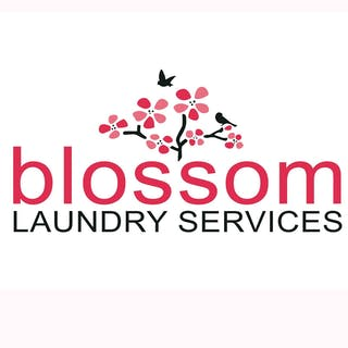 Blossom Laundry Services   Beauty