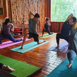 Zen Yoga Studio   Beauty