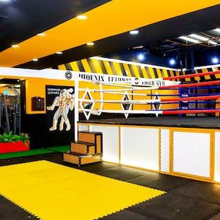 Tiger Gym   Beauty