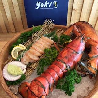 Yoki sushi& Japanese Fusion | yathar